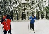 2003 Harz